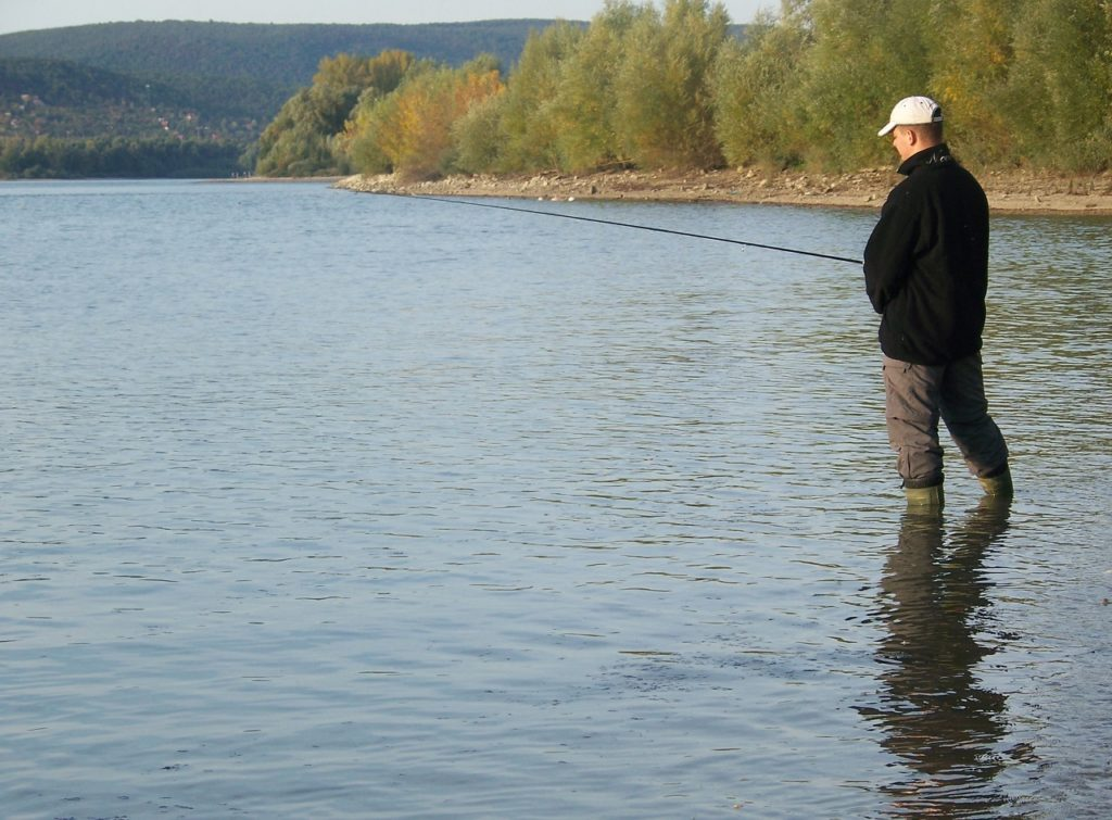 Casting spinner in a bay of the Danube